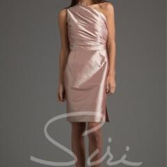 Siri Palm Desert Dress